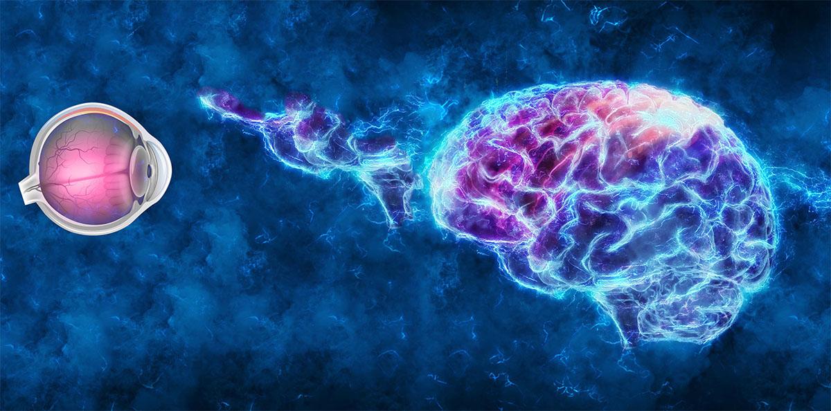 heading_neuro